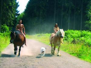 cavalli nudi