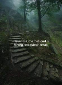 natura silenziosa