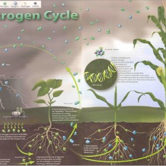 Basic Carbon Cycle Diagram Visio 2010 Uml Software Natural Resources Class 2013 Licensed For Non Commercial