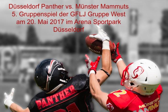 Düsseldorf Panther