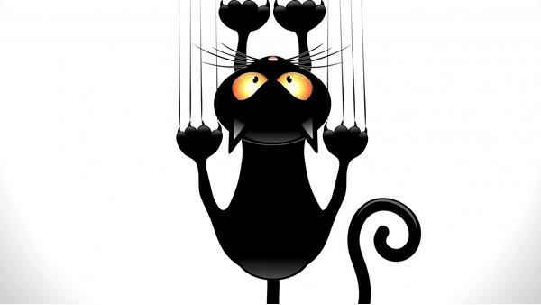 Cat slijpklauwen, het verlaten van sporen.