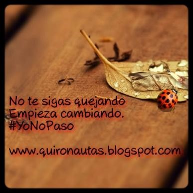 yonopaso5