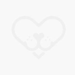 Sofa Cama Para Perros Mercadolibre North S Set Sofá Perro Lex Andmax Boutique Grande