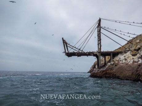 Islas Ballestas, Reserva nacional Paracas, Perú