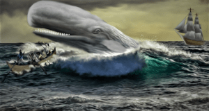 Moby Dick © Shutterstock