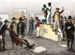 esclavos 5