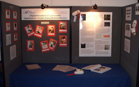 Examples of scientific research posters  Nuffield Foundation