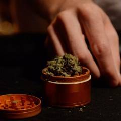 Major Colorado pot shop chain lays off 45% of its employees