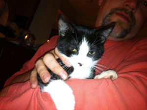 A close-up picture of a man in a dark pink shirt, holding a black-and-white kitten.