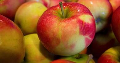 Brčko u centru skandala: Od danas zabrana izvoza jabuka u Rusiju