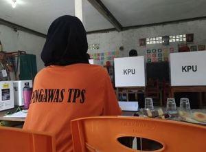 Seberapa Jauh Pengawasan Pemilu Di TPS? Apa Yang Diperoleh & Disetorkan Oleh PTPS??
