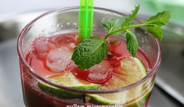 In the Mix: Watermeloen Mojito