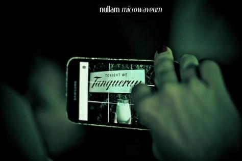 Nullam Microwaveum-0163