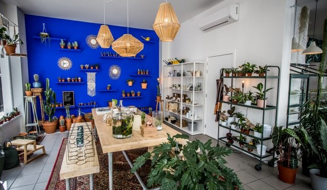 The Plant Corner …. nieuw in Antwerpen