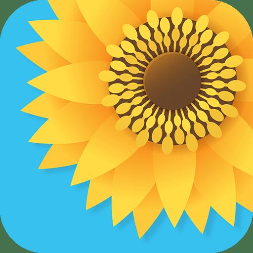 Gallery – Photo Gallery & Video Gallery Pro 4.5