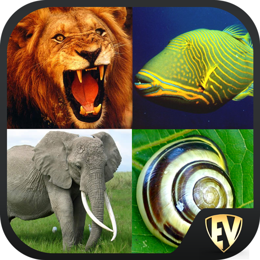 Animal Encyclopedia Complete Reference Guide Free 1.1.3