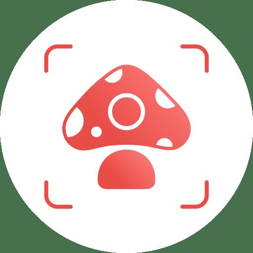 Picture Mushroom – Mushroom ID 2.2