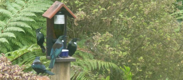 """We'd rather drink Tui than sugar water...""  - Yeah Right."