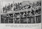 Kiwi troops departing Auckland World War I
