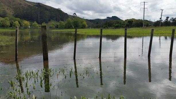 Waikato flooding.