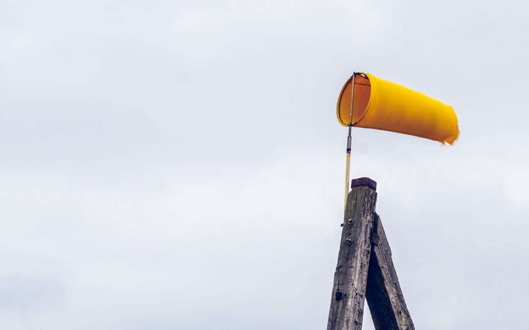 Yellow windsock to represent forecasts; Numberslides explains the importance of your financial projections