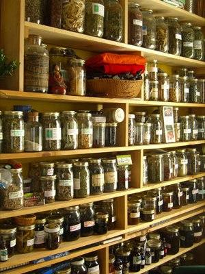 medicinal herbs and integrative medicine
