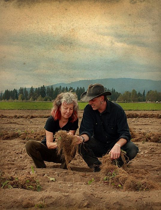 Shawn Donnille of Mountain Rose Herbs speaks with the Sustainable Herbs Project about sourcing, quality control, and sustainability.