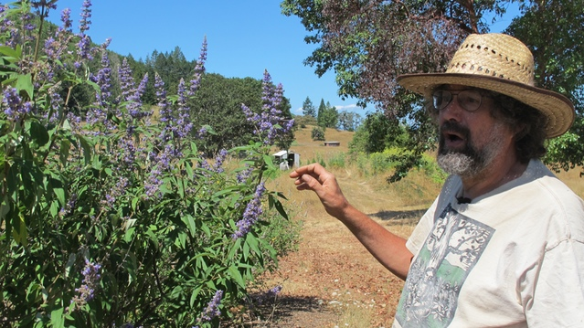 Jeff Bodony, co-owner with wife Liz Matteson, co-owner of Heron Botanicals and of Viriditas Wild Gardens.