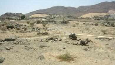 Photo of د روژې فتوحات (د بدر فتح) ۳/۳