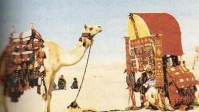 Photo of د حجاج بن یوسف الثقفي او د هغه د مېرمنې کیسه