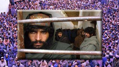 Photo of مسئولیت مستقیم امریکا در قبال آزادی زندانیان