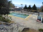 皐月保育園の移転建設地…「北部市民プール以外の場所も視野に」へ転換