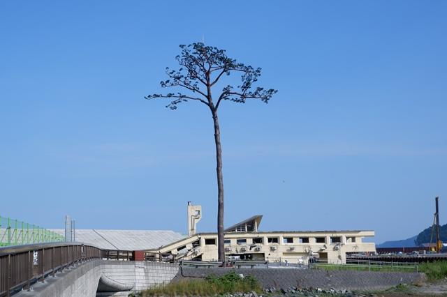 震災から7年…岩手県陸前高田市の「今」