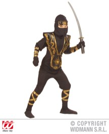 Dragon ninja - costume, corazza 3D, maschera, fascia - cod. 5555