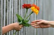 Il ruolo del dono nell'economia solidale