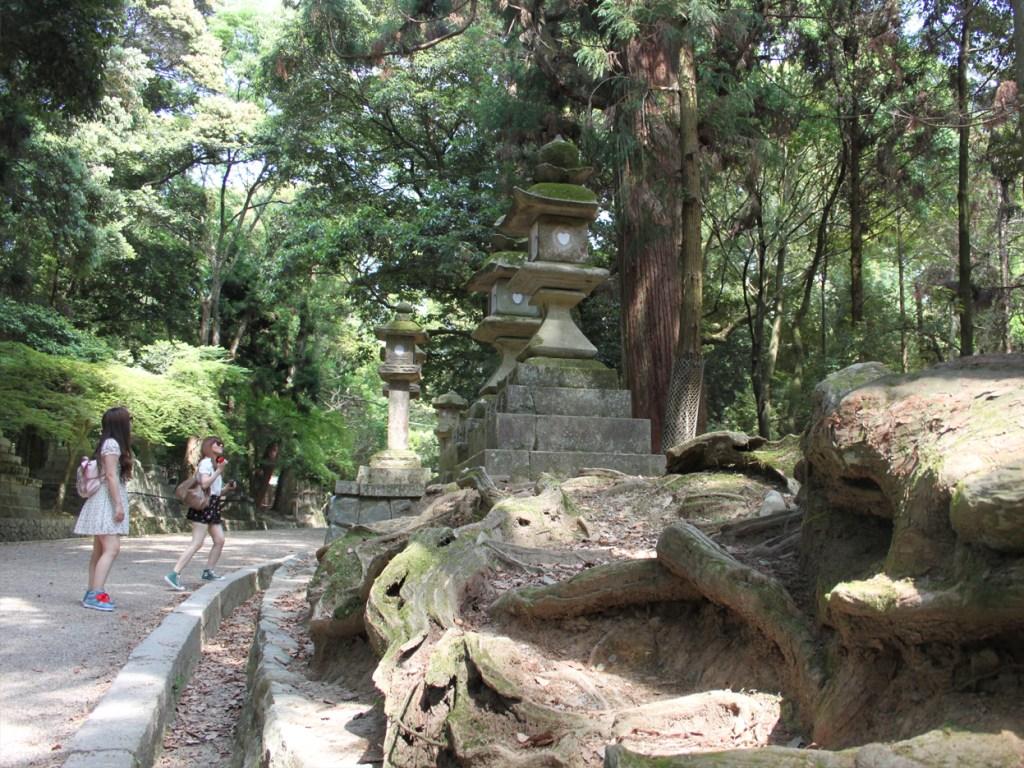 Diario Giappone Nara Viale