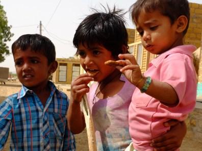 Diario India Thar Biscotti