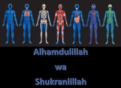 Alhamdulillah wa Shukranlillah Functioning Body Organs