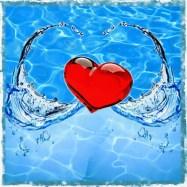Heart Washing love