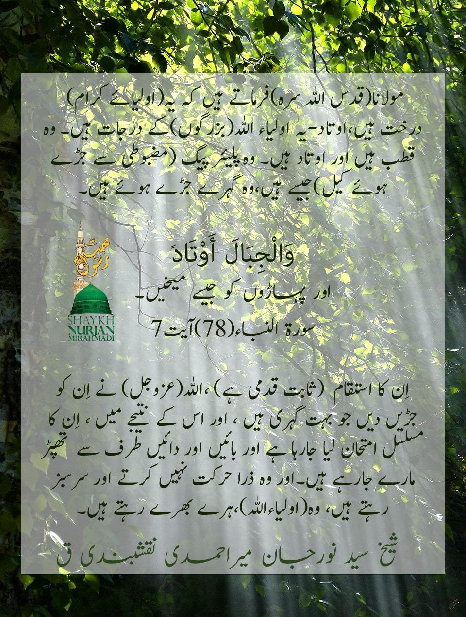 Awliya Are Like Trees and Mountains With Deep Roots   اولیاء کرام درختوں اور پہا...