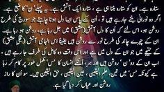Urdu – Insaan ان س ان has two noon ن