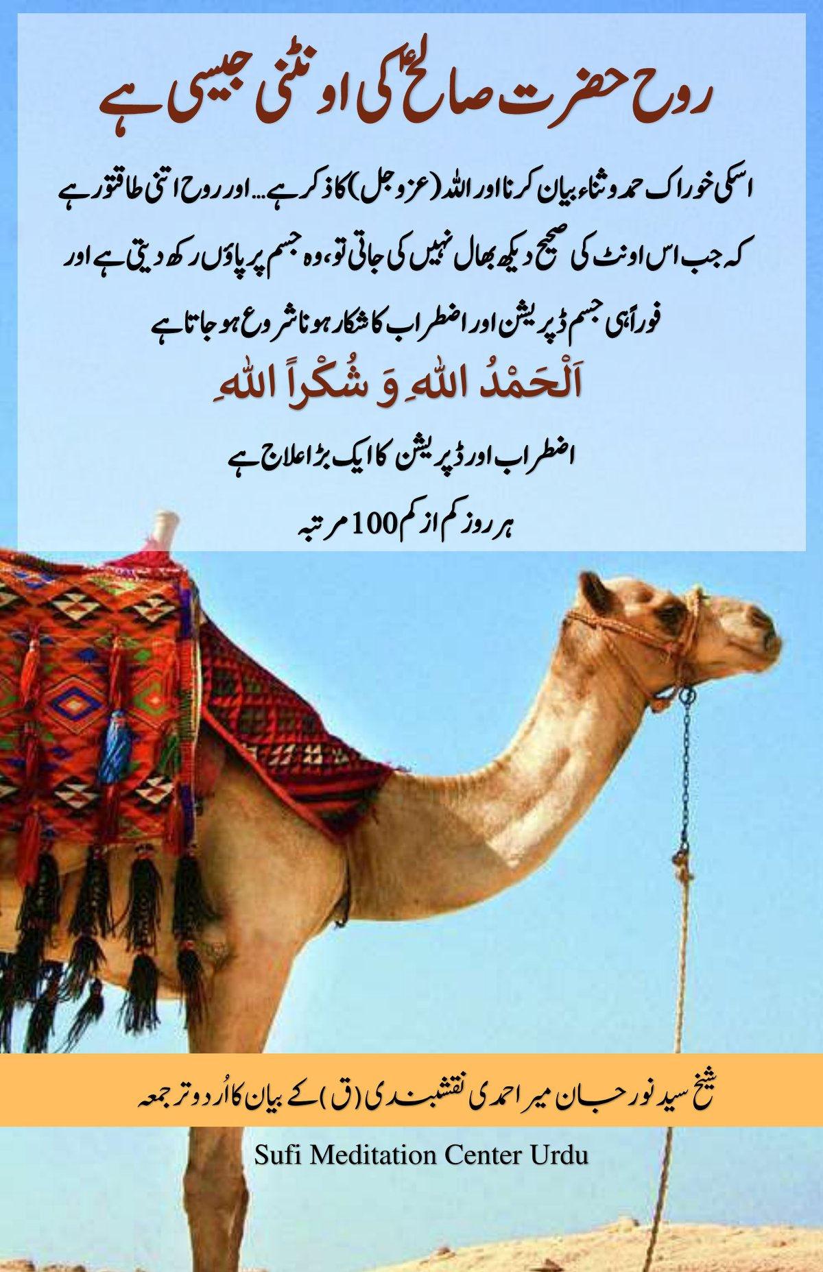 Soul is like the She-Camel of Prophet Saleh [AS], nourish it with energy of Zikr...