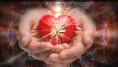 hands_holding_muhammadan_heart