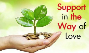 support in the way of love coins with plant charity zakah sadaqah