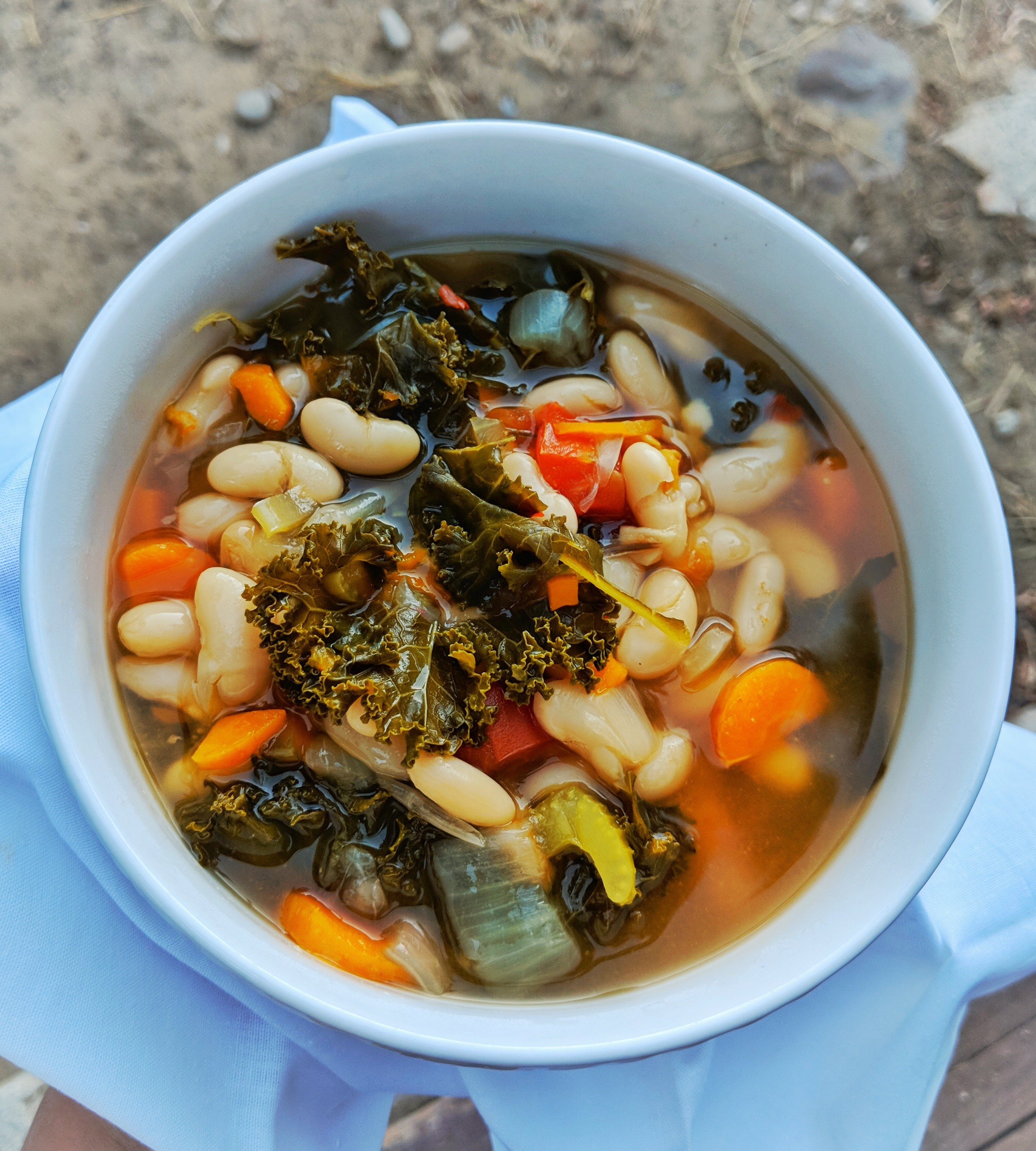 Vegan Instant Pot White Bean and Kale Soup