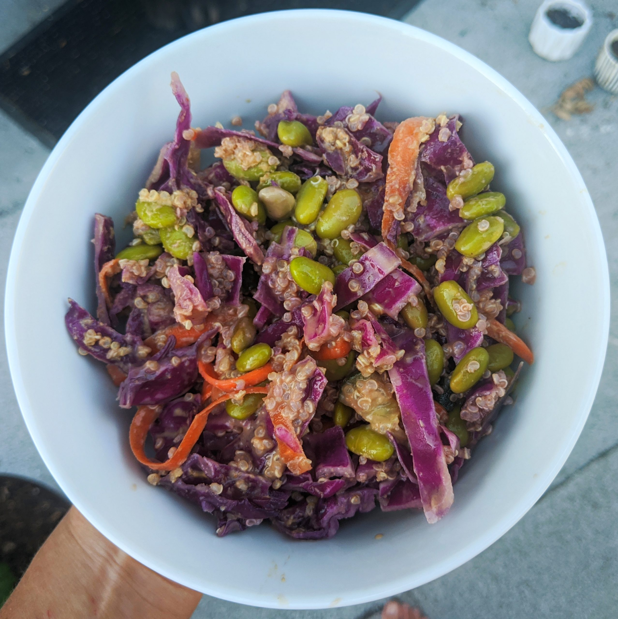 Purple Cabbage and Edamame Salad with Peanut Sauce