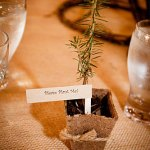 potted wedding seedling idea