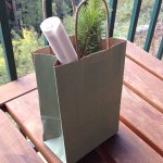 seedlings wedding gift bag