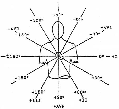 Ekg Wiring Diagram Phlebotomy Diagram ~ Elsavadorla