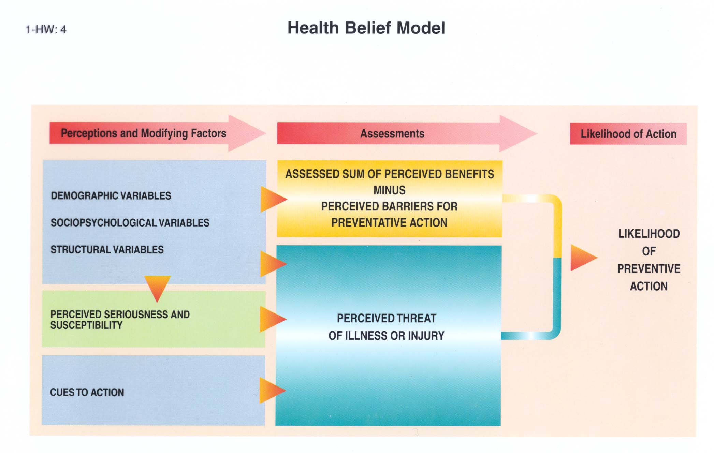 Nrsg Nursing Influencing Change